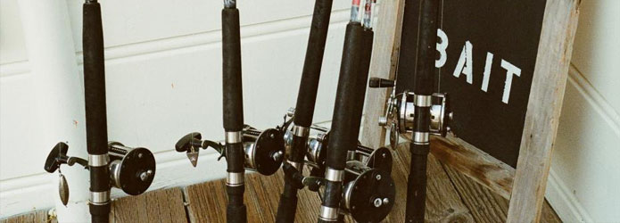 Binary options fisher app