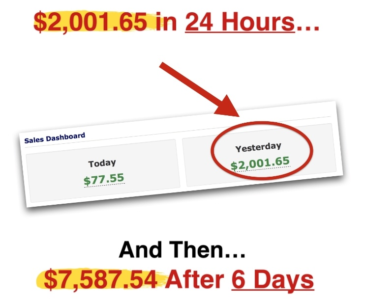 Traffic Lockdown 2 sales pitch earnings